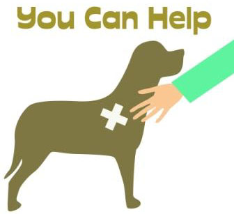 Help us alert pet owners, share your loss in TheDogPress blog.